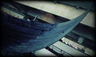 Vikingship remnant